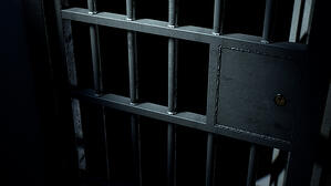 in prison from tax fraud