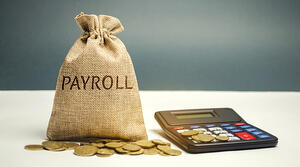 payroll tax crime